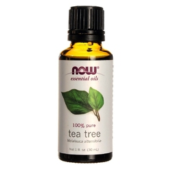 Oil Tea Tree 1 oz