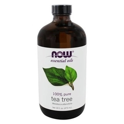 Oil Tea Tree 16 oz