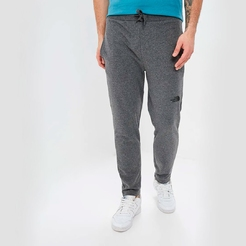 Брюки the north face M STAND PANT LIGHT TNFMEDIUMGRYHTR