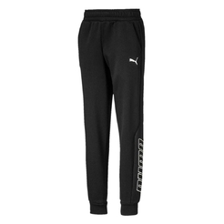 Брюки Puma Alpha Holiday Sweat Pants Fl B580246011 - фото 1