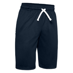 Шорты Under armour Ua Prototype Wordmark Shorts1333604-409 - фото 1